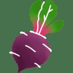 Betterave légume de saison