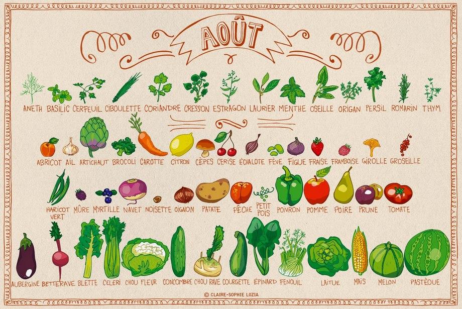 Calendrier des fruits et légumes de saison en août