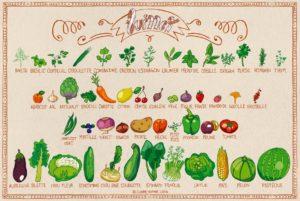 Calendrier des fruits et légumes de saison en juillet