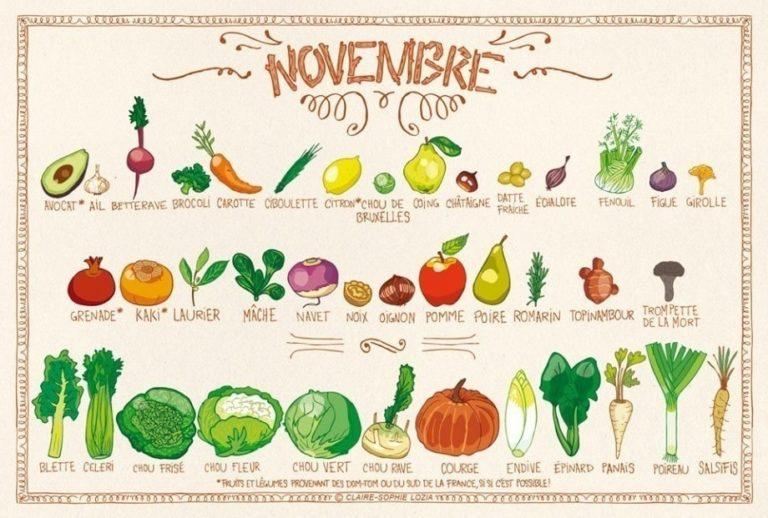 Calendrier des fruits et légumes de saison en novembre