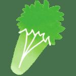 Céleri branche légume de saison