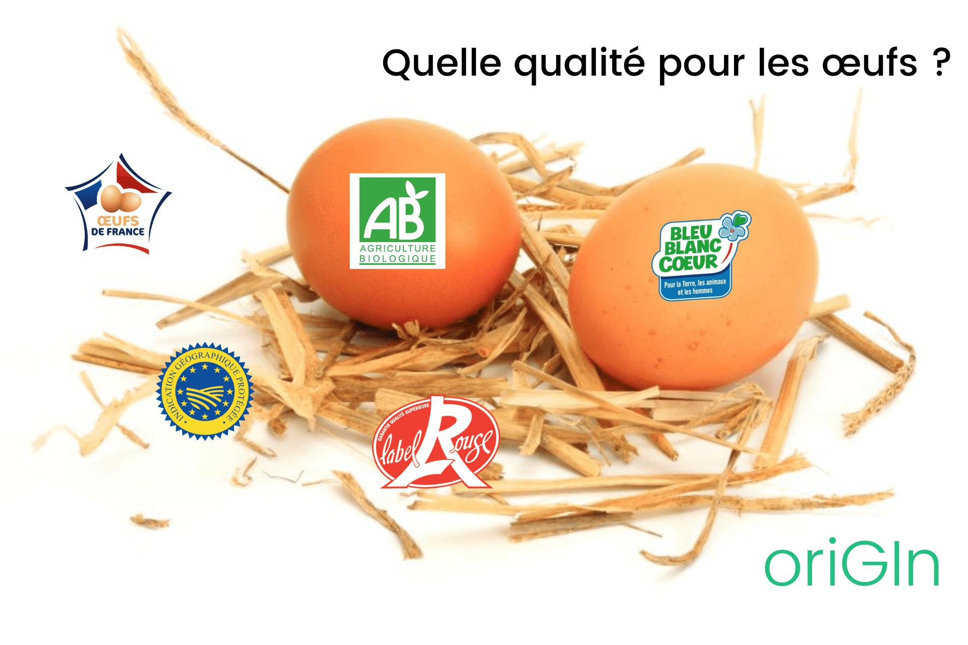 Comment choisir des œufs de qualité