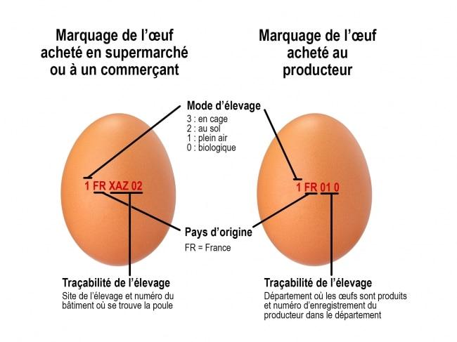 Etiquette de catégories des œufs en France