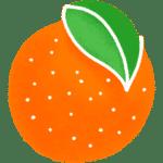 Orange fruit de saison
